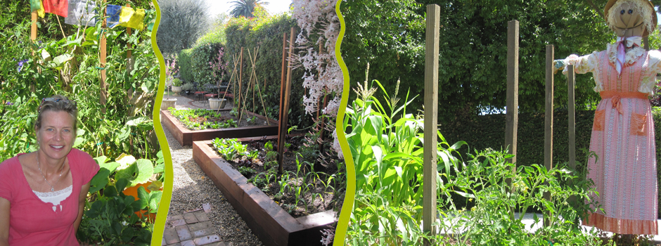 Some of my previous attempts at a vegetable garden
