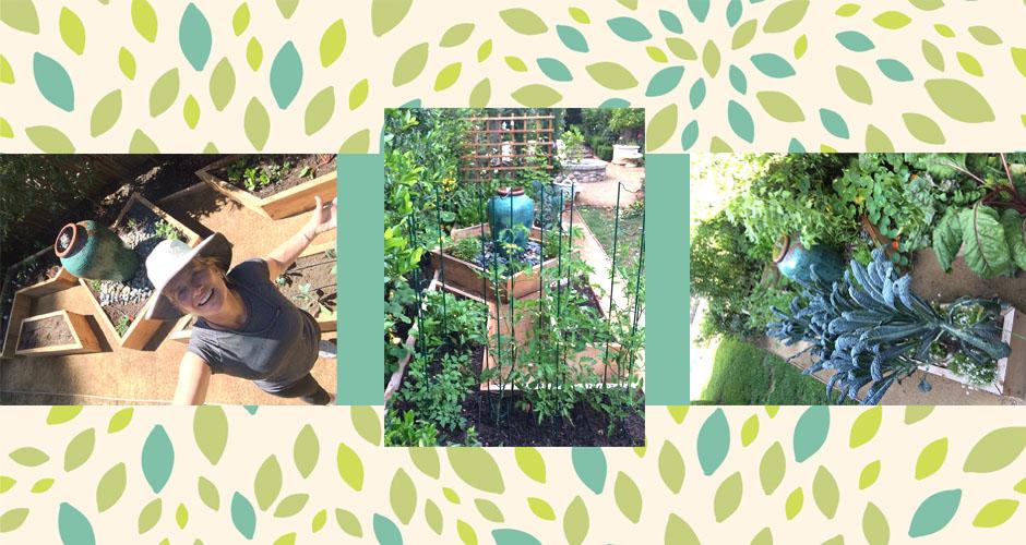 Garden Update: A Video Tour of My Blossoming Vegetable Garden