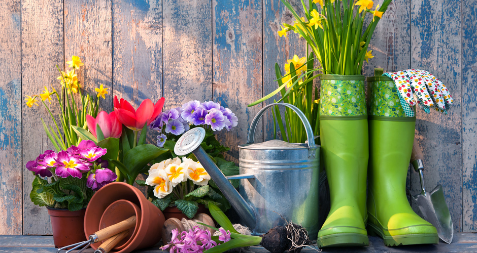 Spring is Here … It's Time to Garden
